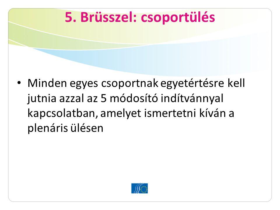 5. Brüsszel: csoportülés Minden egyes csoportnak egyetértésre kell jutnia azzal az 5 módosító indítvánnyal kapcsolatban, amelyet ismertetni kíván a pl