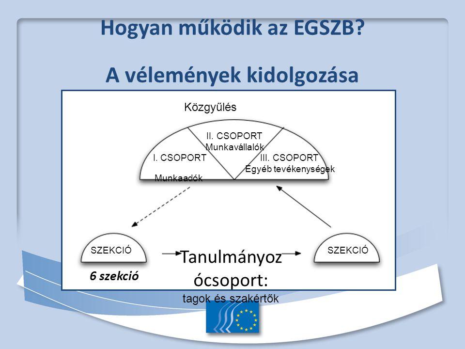 Hogyan működik az EGSZB. A vélemények kidolgozása 6 szekció Közgyűlés II.
