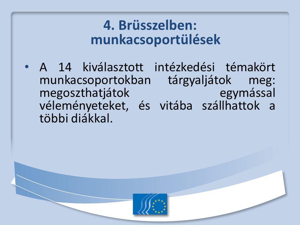 4. Brüsszelben: munkacsoportülések A 14 kiválasztott intézkedési témakört munkacsoportokban tárgyaljátok meg: megoszthatjátok egymással véleményeteket