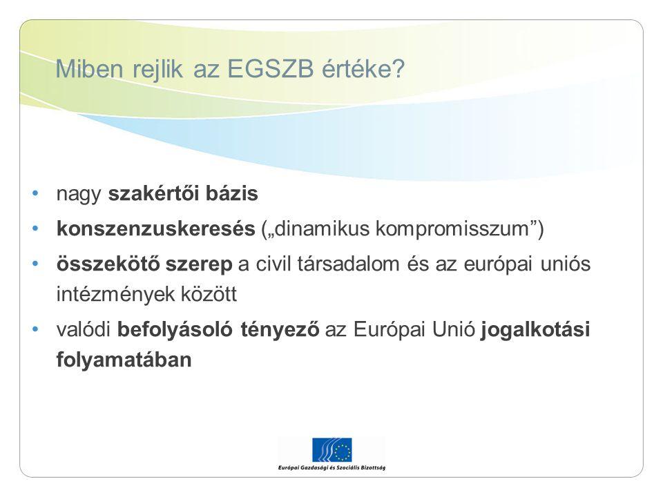 """Miben rejlik az EGSZB értéke? nagy szakértői bázis konszenzuskeresés (""""dinamikus kompromisszum"""") összekötő szerep a civil társadalom és az európai uni"""