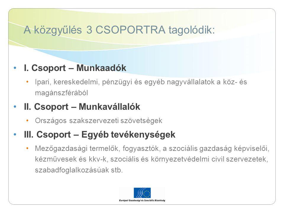 A közgyűlés 3 CSOPORTRA tagolódik: I. Csoport – Munkaadók Ipari, kereskedelmi, pénzügyi és egyéb nagyvállalatok a köz- és magánszférából II. Csoport –