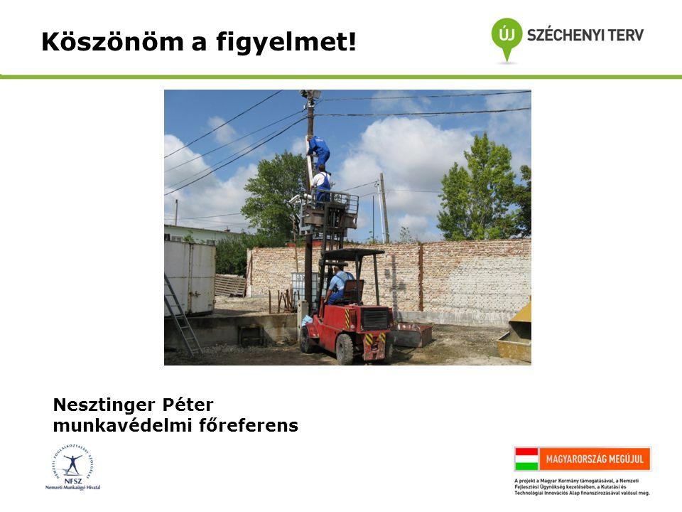 Nesztinger Péter munkavédelmi főreferens Köszönöm a figyelmet!
