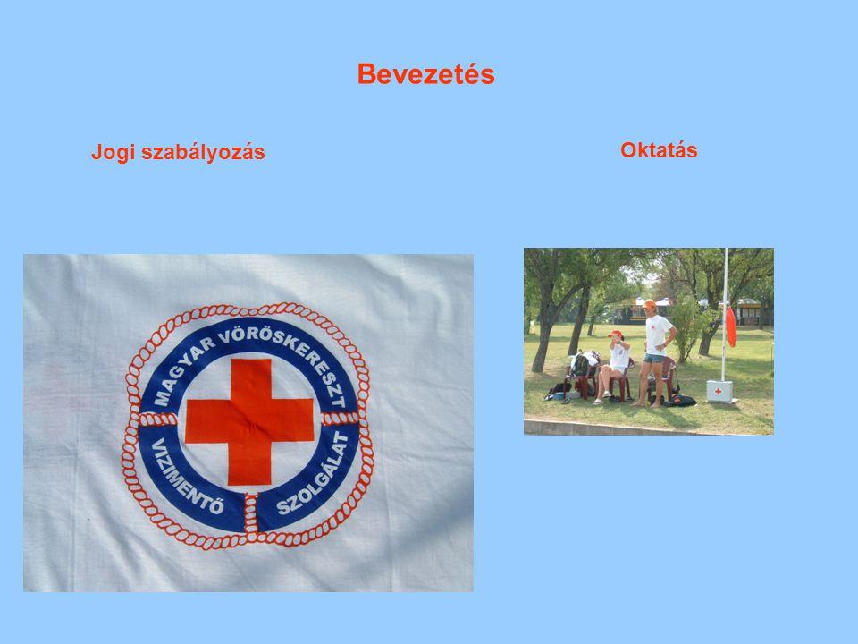 Vizek fajtái, jellemzői Magyarországon tenger kivételével minden fajta természetes víz megtalálható: patak, folyó, folyam, tó.