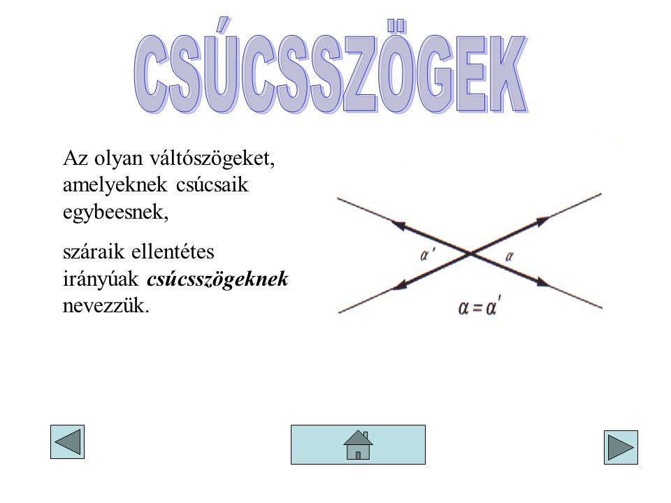 Az olyan váltószögeket, amelyeknek csúcsaik egybeesnek, száraik ellentétes irányúak csúcsszögeknek nevezzük.