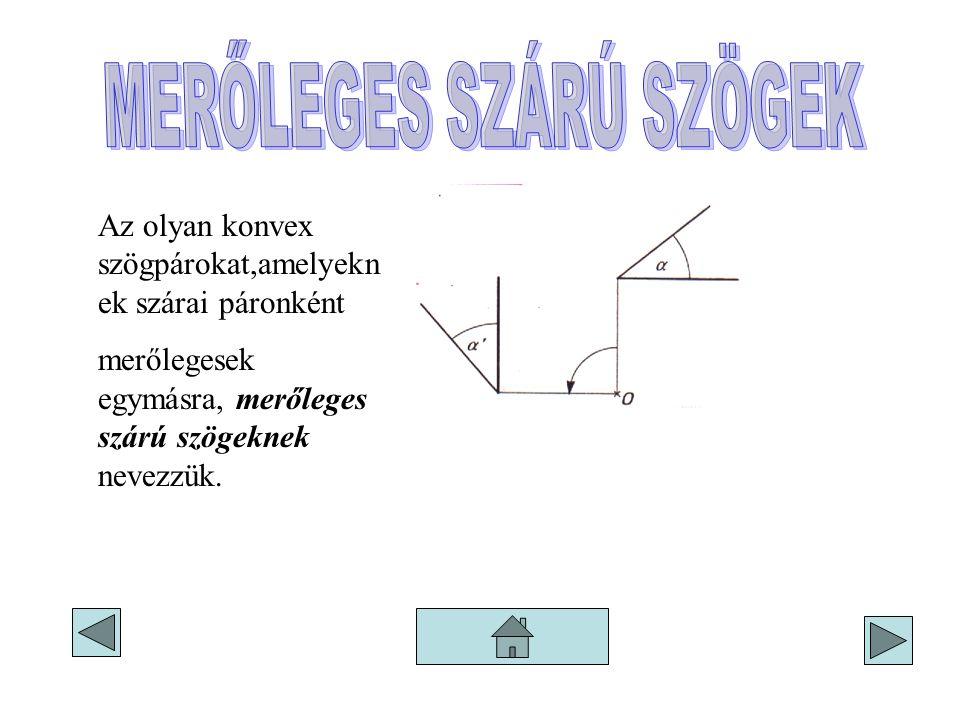 Az olyan konvex szögpárokat,amelyekn ek szárai páronként merőlegesek egymásra, merőleges szárú szögeknek nevezzük.
