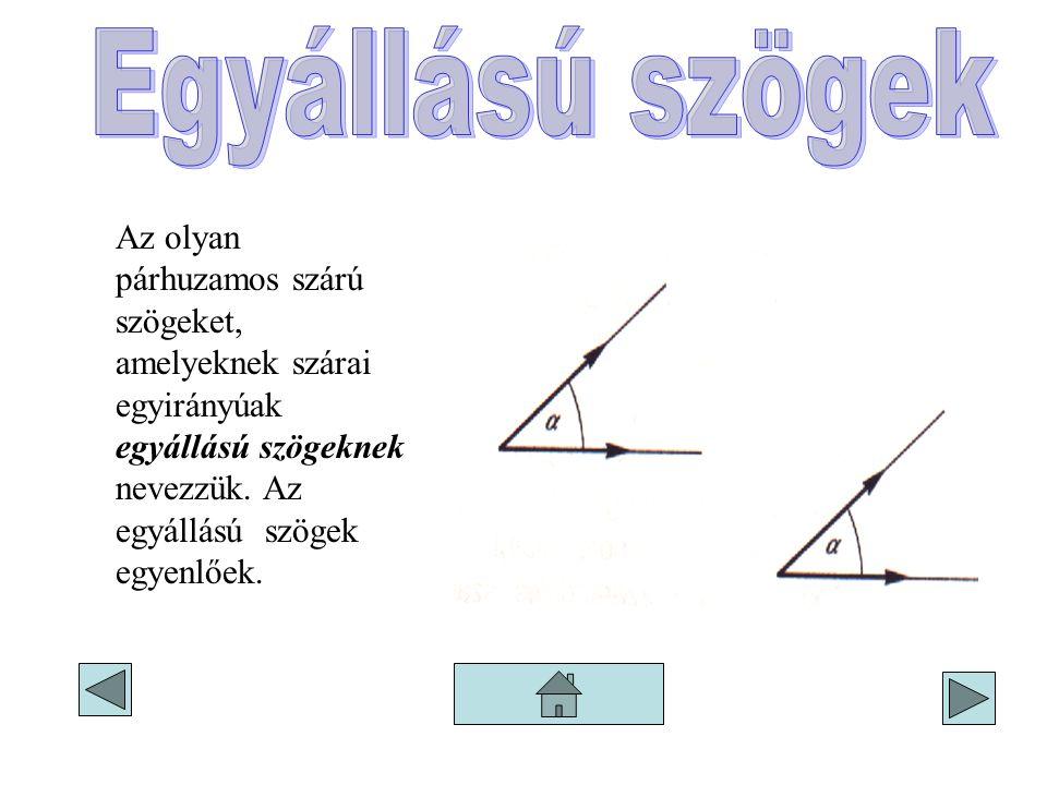 Az olyan párhuzamos szárú szögeket, amelyeknek szárai egyirányúak egyállású szögeknek nevezzük. Az egyállású szögek egyenlőek.