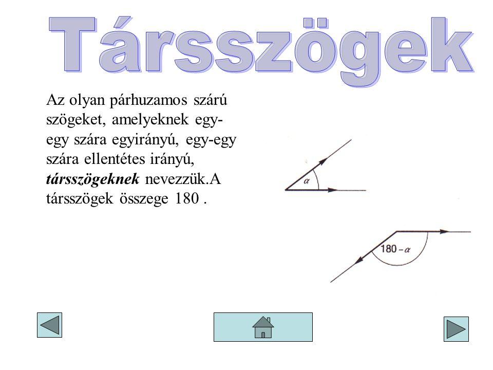 Az olyan párhuzamos szárú szögeket, amelyeknek egy- egy szára egyirányú, egy-egy szára ellentétes irányú, társszögeknek nevezzük.A társszögek összege