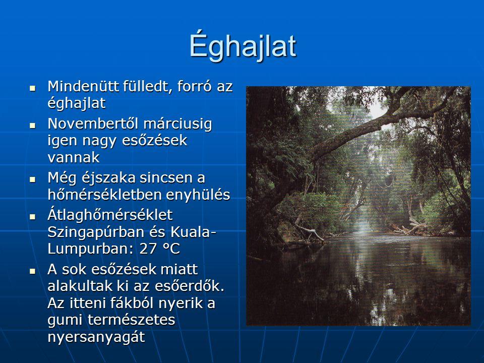 Éghajlat Mindenütt fülledt, forró az éghajlat Mindenütt fülledt, forró az éghajlat Novembertől márciusig igen nagy esőzések vannak Novembertől március