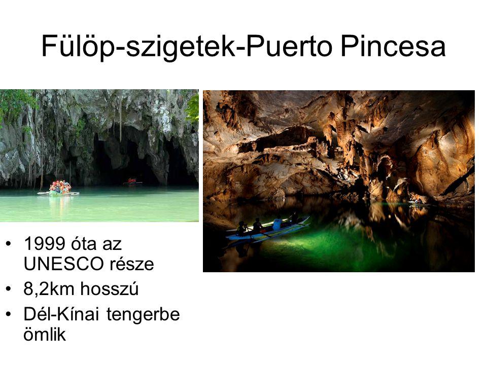 Fülöp-szigetek-Puerto Pincesa 1999 óta az UNESCO része 8,2km hosszú Dél-Kínai tengerbe ömlik