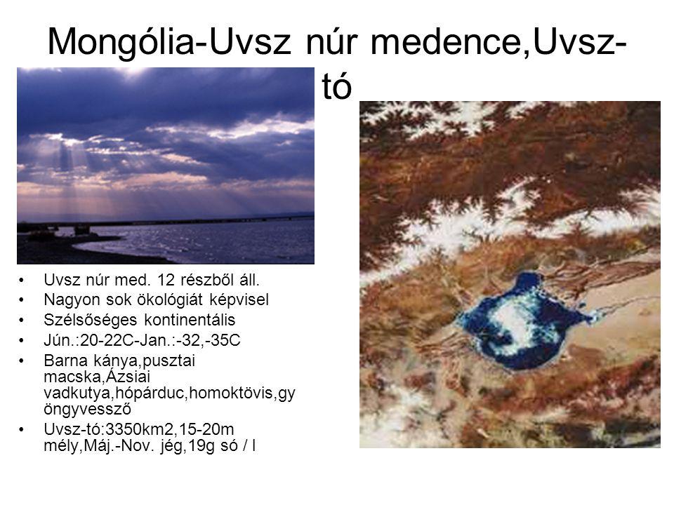 Mongólia-Uvsz núr medence,Uvsz- tó Uvsz núr med. 12 részből áll. Nagyon sok ökológiát képvisel Szélsőséges kontinentális Jún.:20-22C-Jan.:-32,-35C Bar
