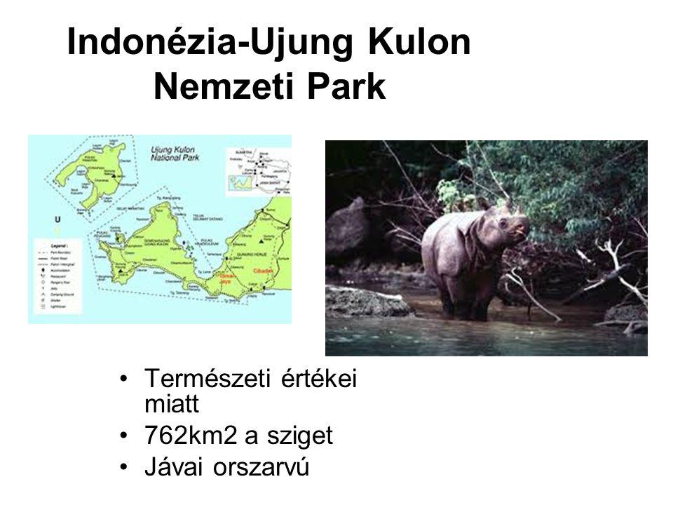 Indonézia-Ujung Kulon Nemzeti Park Természeti értékei miatt 762km2 a sziget Jávai orszarvú