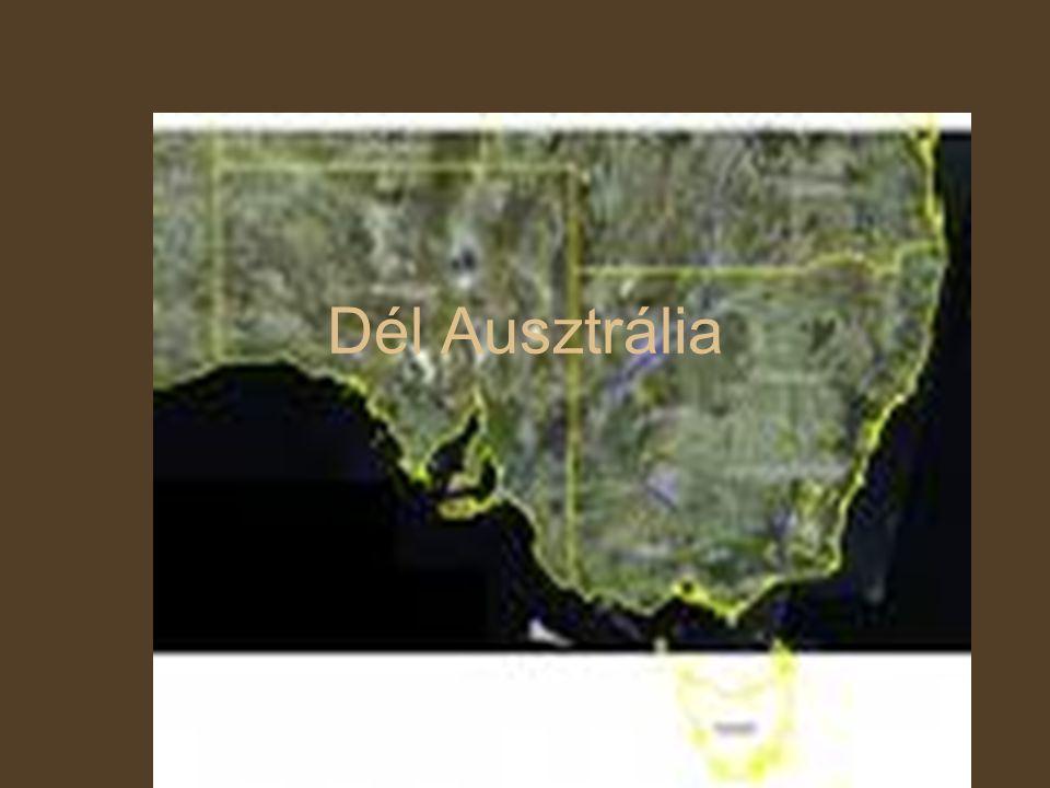 NÉPESSÉG A régió lakossága: 1 554 700 fő Nyelv: Angol Főváros: Adelaide - népessége:1 129 145 fő Terület: 984,377 km2 (kb.10*Magyarország) Népsűrűség: 1,6 fő/km2 A lakosság 72%-a a városokban lakik, 13% a városok környékén, 15% falun vagy tanyán.