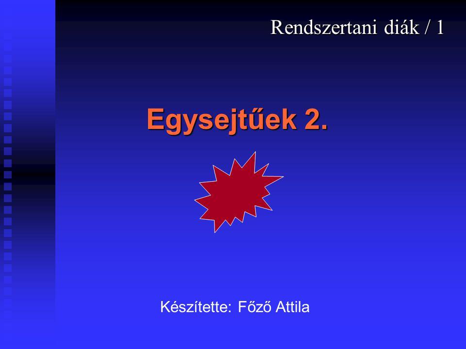 Egysejtűek 2. Rendszertani diák / 1 Készítette: Főző Attila