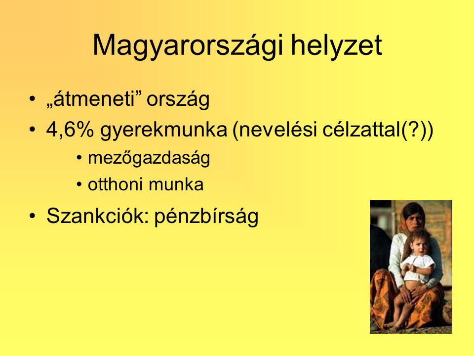 """Magyarországi helyzet """"átmeneti"""" ország 4,6% gyerekmunka (nevelési célzattal(?)) mezőgazdaság otthoni munka Szankciók: pénzbírság"""