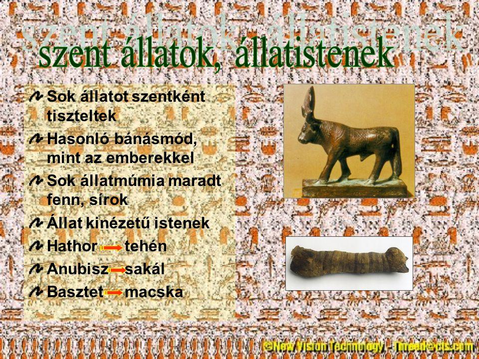 Sok állatot szentként tiszteltek Hasonló bánásmód, mint az emberekkel Sok állatmúmia maradt fenn, sírok Állat kinézetű istenek Hathortehén Anubiszsaká