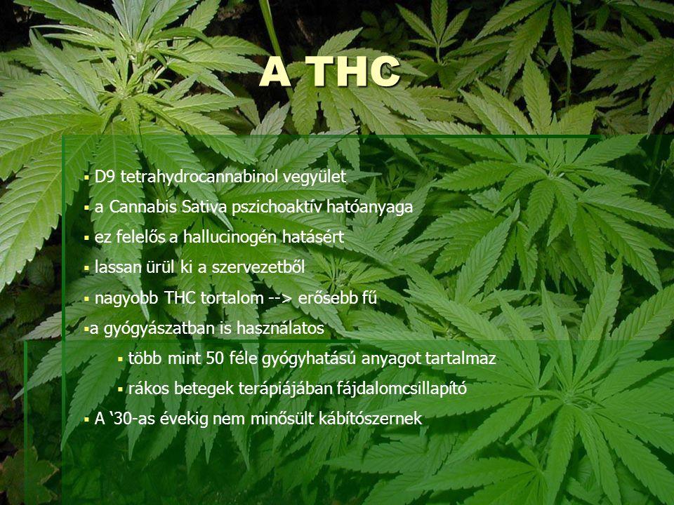 A THC  D9 tetrahydrocannabinol vegyület  a Cannabis Sativa pszichoaktív hatóanyaga  ez felelős a hallucinogén hatásért  lassan ürül ki a szervezet