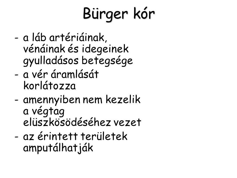Bürger kór -a láb artériáinak, vénáinak és idegeinek gyulladásos betegsége -a vér áramlását korlátozza -amennyiben nem kezelik a végtag elüszkösödéséh