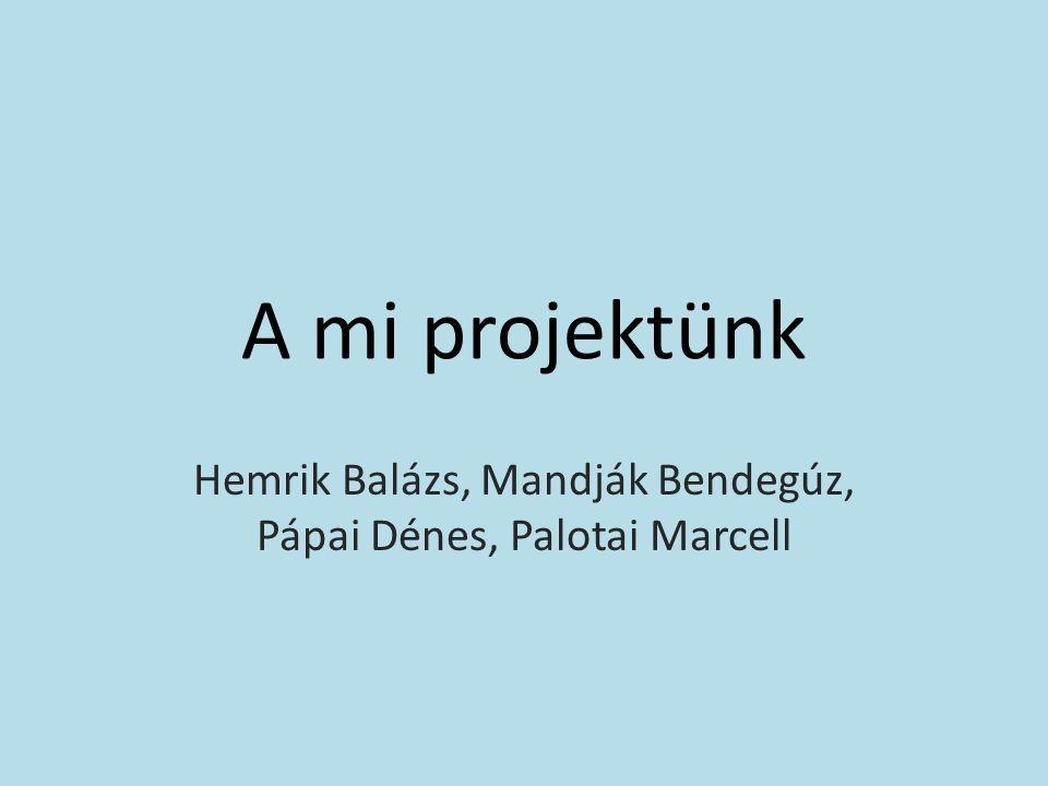A mi projektünk Hemrik Balázs, Mandják Bendegúz, Pápai Dénes, Palotai Marcell
