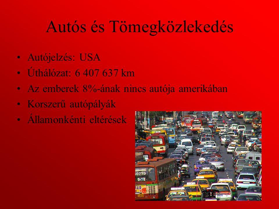 Vasúti közlekedés Nagy síkságok miatt Vasúthálózat: 227 736 km Nagyobb vasúttársaságok: –Amtrak –Grand Trunk Corporation