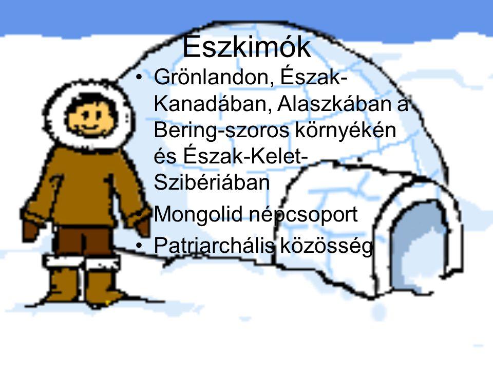 Eszkimók Grönlandon, Észak- Kanadában, Alaszkában a Bering-szoros környékén és Észak-Kelet- Szibériában Mongolid népcsoport Patriarchális közösség