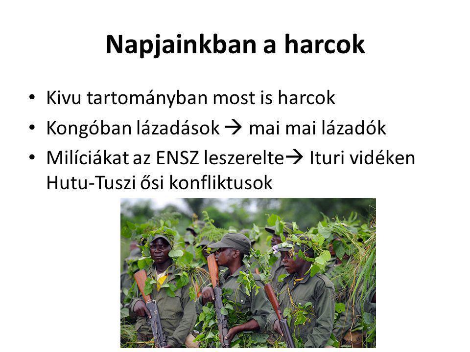 Napjainkban a harcok Kivu tartományban most is harcok Kongóban lázadások  mai mai lázadók Milíciákat az ENSZ leszerelte  Ituri vidéken Hutu-Tuszi ős