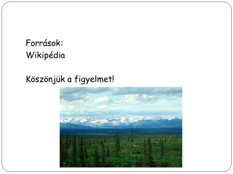 Források: Wikipédia Köszönjük a figyelmet!
