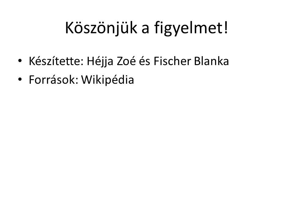 Köszönjük a figyelmet! Készítette: Héjja Zoé és Fischer Blanka Források: Wikipédia