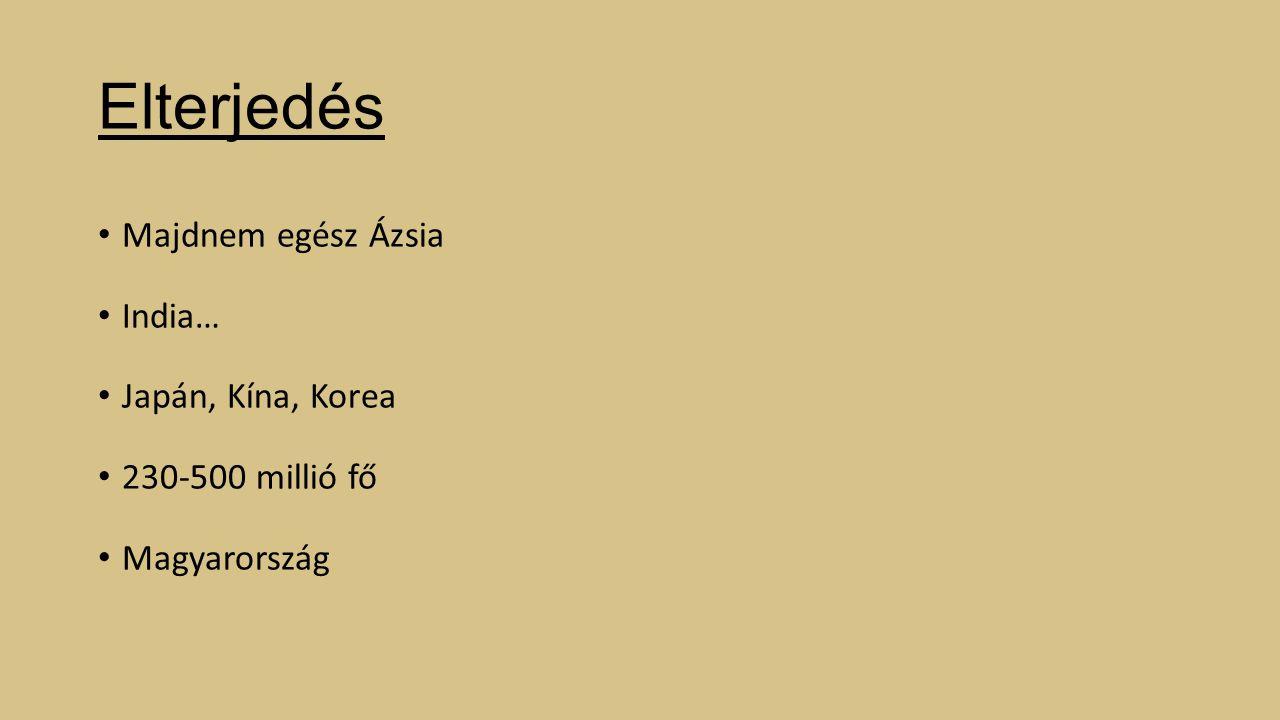 Elterjedés Majdnem egész Ázsia India… Japán, Kína, Korea 230-500 millió fő Magyarország