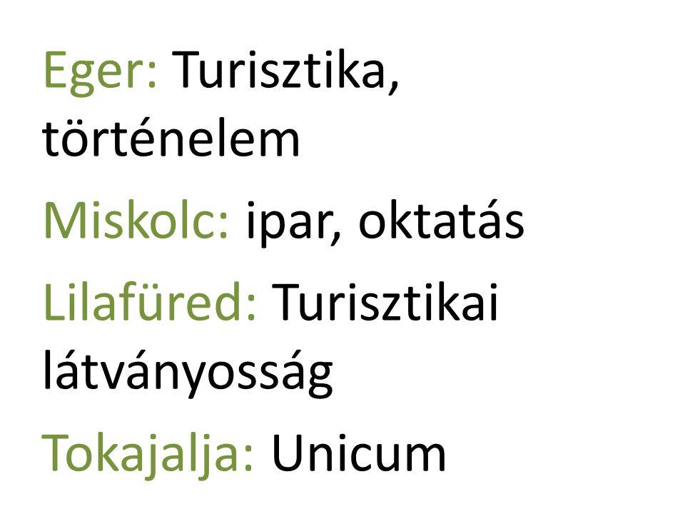 Eger: Turisztika, történelem Miskolc: ipar, oktatás Lilafüred: Turisztikai látványosság Tokajalja: Unicum