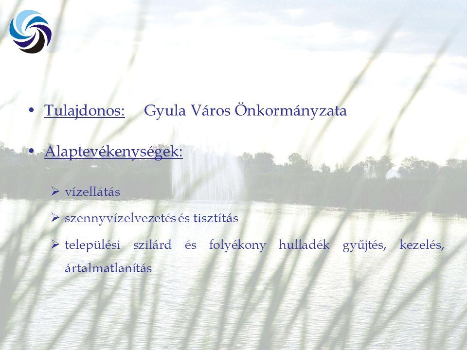 Tulajdonos: Gyula Város Önkormányzata Alaptevékenységek:  vízellátás  szennyvízelvezetés és tisztítás  települési szilárd és folyékony hulladék gyűjtés, kezelés, ártalmatlanítás