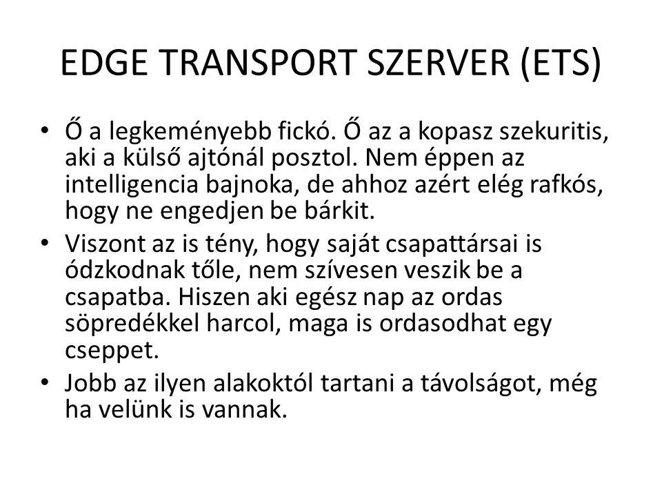 EDGE TRANSPORT SZERVER (ETS) Ő a legkeményebb fickó. Ő az a kopasz szekuritis, aki a külső ajtónál posztol. Nem éppen az intelligencia bajnoka, de ahh