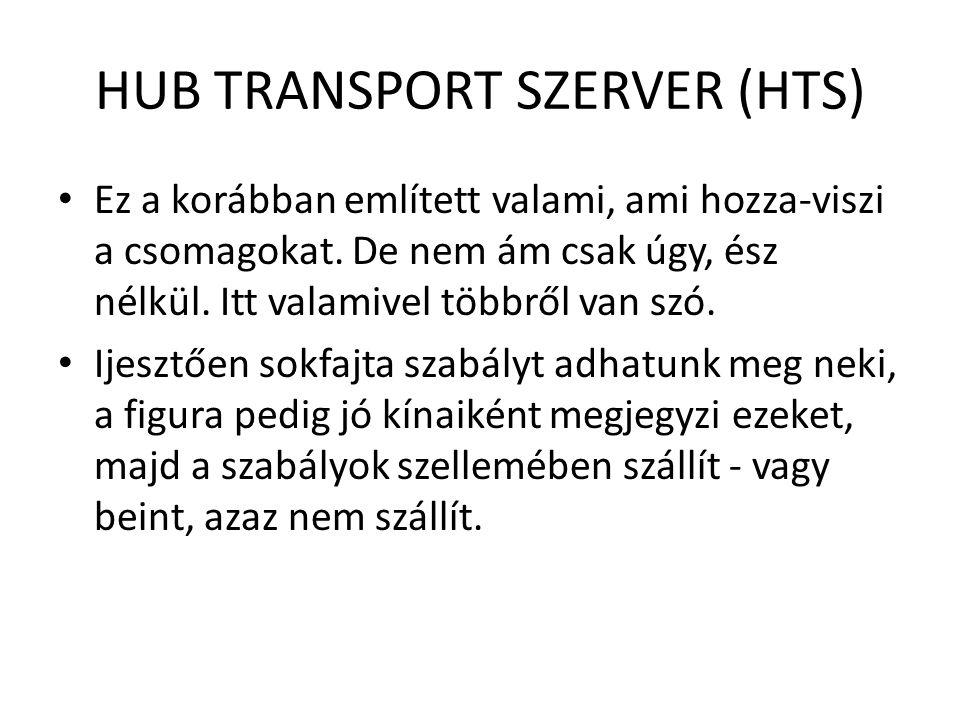 HUB TRANSPORT SZERVER (HTS) Ez a korábban említett valami, ami hozza-viszi a csomagokat. De nem ám csak úgy, ész nélkül. Itt valamivel többről van szó