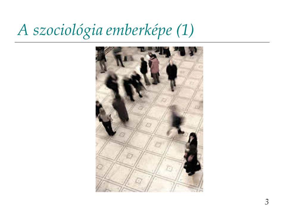 A szociológia emberképe (2) Az egyén amikor cselekszik, a társadalmi normákat követ.