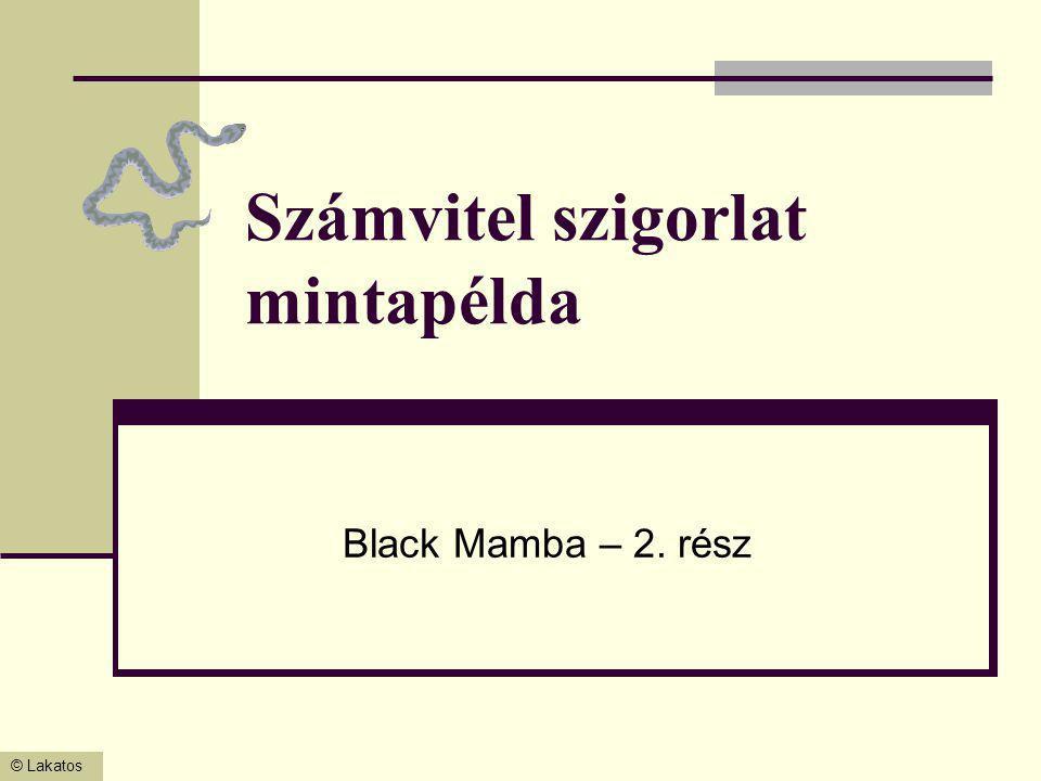 © Lakatos Számvitel szigorlat mintapélda Black Mamba – 2. rész