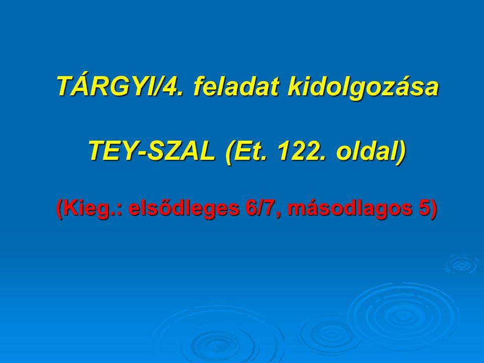 TÁRGYI/4. feladat kidolgozása TEY-SZAL (Et. 122. oldal) (Kieg.: elsődleges 6/7, másodlagos 5)