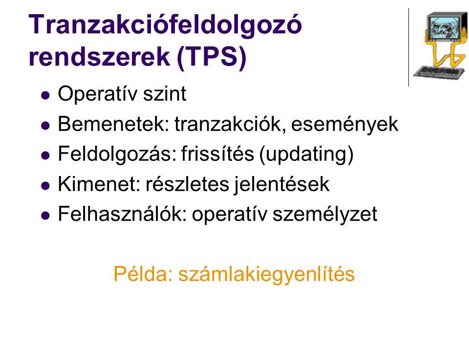 Operatív szint Bemenetek: tranzakciók, események Feldolgozás: frissítés (updating) Kimenet: részletes jelentések Felhasználók: operatív személyzet Pél