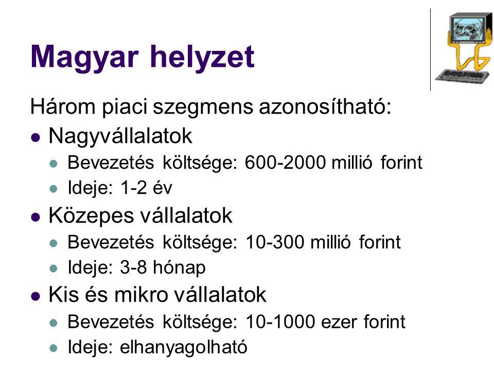 Magyar helyzet Három piaci szegmens azonosítható: Nagyvállalatok Bevezetés költsége: 600-2000 millió forint Ideje: 1-2 év Közepes vállalatok Bevezetés