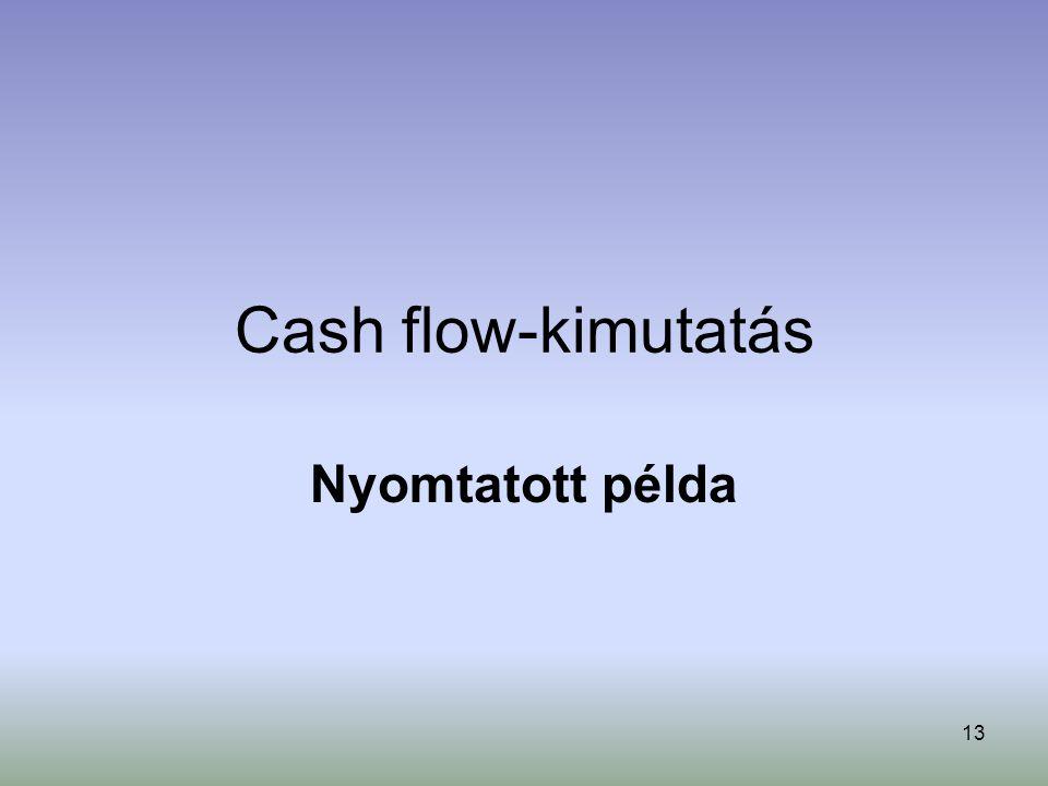 13 Cash flow-kimutatás Nyomtatott példa