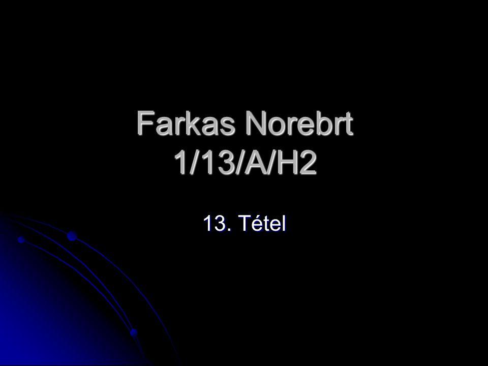 Farkas Norebrt 1/13/A/H2 13. Tétel