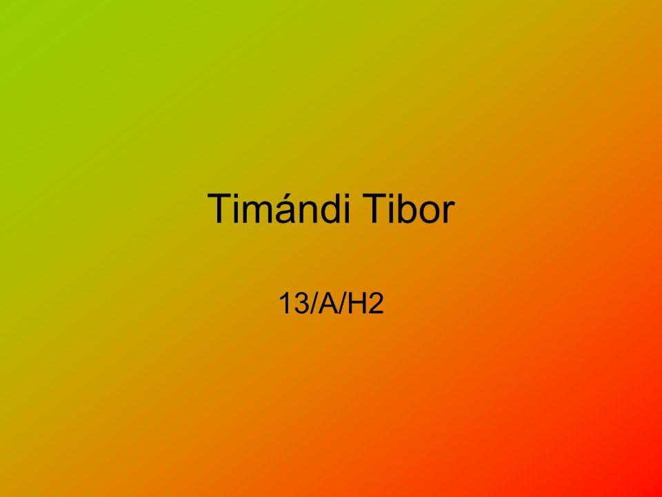Timándi Tibor 13/A/H2