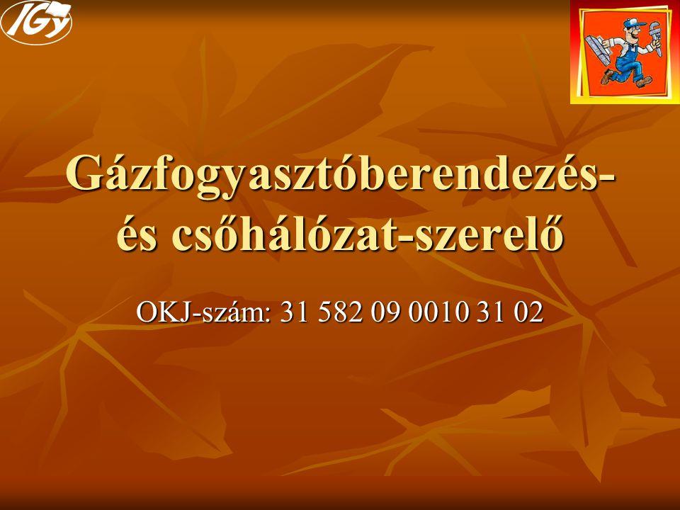 Gázfogyasztóberendezés- és csőhálózat-szerelő OKJ-szám: 31 582 09 0010 31 02