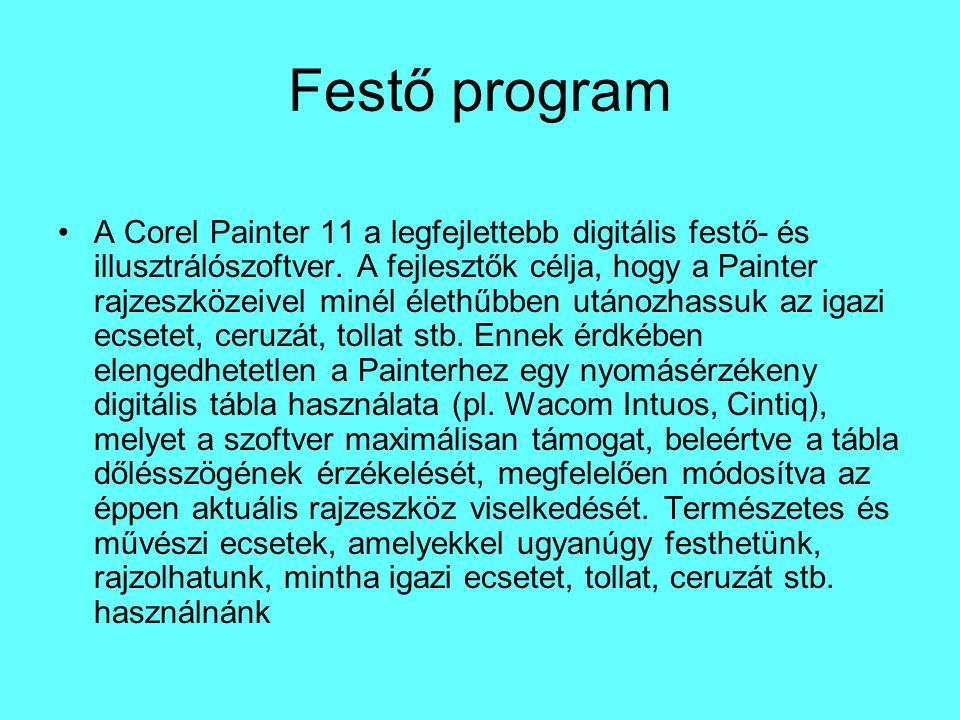 Festő program A Corel Painter 11 a legfejlettebb digitális festő- és illusztrálószoftver. A fejlesztők célja, hogy a Painter rajzeszközeivel minél éle