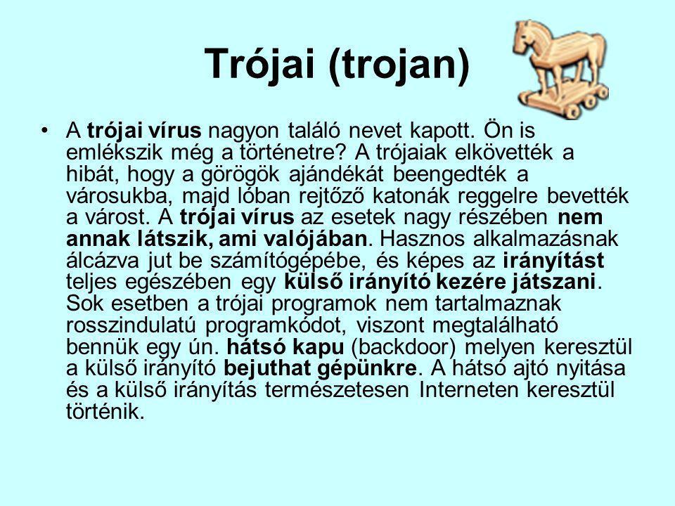Trójai (trojan) A trójai vírus nagyon találó nevet kapott.