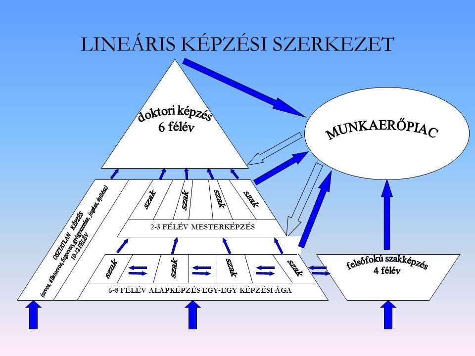 LINEÁRIS KÉPZÉSI SZERKEZET 6-8 FÉLÉV ALAPKÉPZÉS EGY-EGY KÉPZÉSI ÁGA 2-5 FÉLÉV MESTERKÉPZÉS