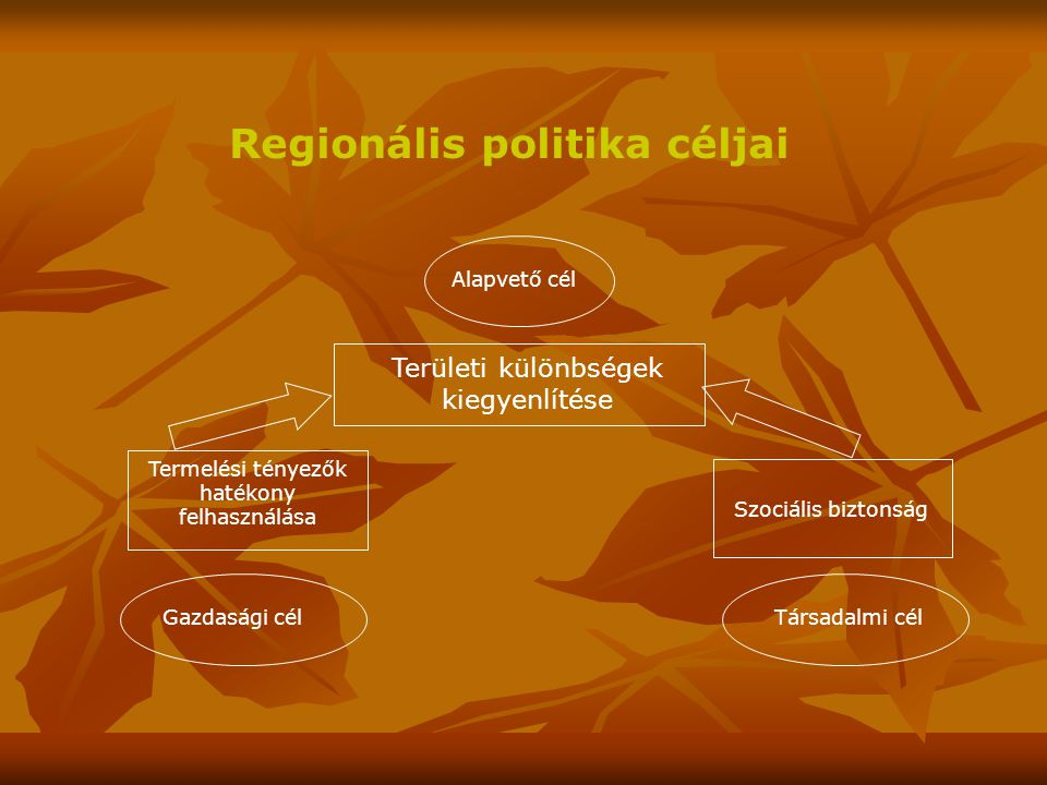 Regionális politika céljai Területi különbségek kiegyenlítése Alapvető cél Termelési tényezők hatékony felhasználása Gazdasági cél Szociális biztonság Társadalmi cél
