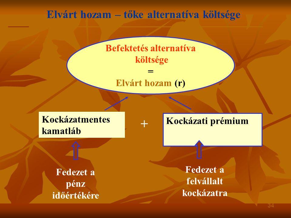 Elvárt hozam – tőke alternatíva költsége 34 Befektetés alternatíva költsége = Elvárt hozam (r) Befektetés alternatíva költsége = Elvárt hozam (r) Kock