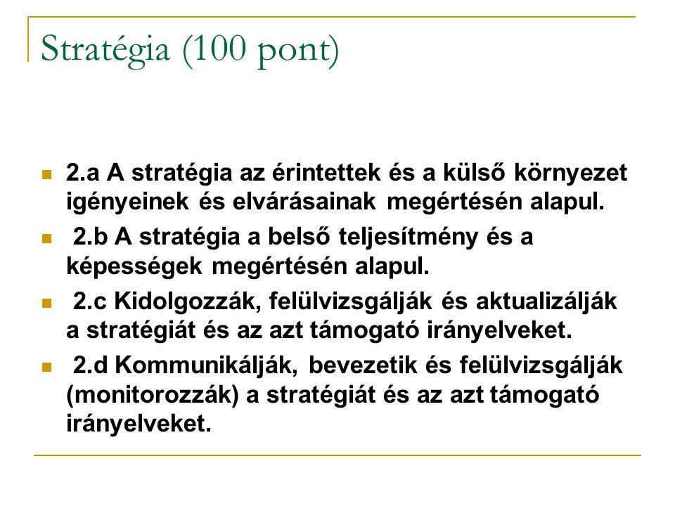 Stratégia (100 pont) 2.a A stratégia az érintettek és a külső környezet igényeinek és elvárásainak megértésén alapul. 2.b A stratégia a belső teljesít