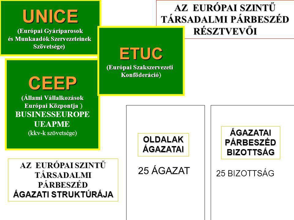 AZ EURÓPAI SZINTŰ TÁRSADALMI PÁRBESZÉD RÉSZTVEVŐI CEEP (Állami Vállalkozások Európai Központja Európai Központja ) BUSINESSEUROPE UEAPME (kkv-k szövetsége) UNICE (Európai Gyáriparosok és Munkaadók Szervezeteinek és Munkaadók SzervezeteinekSzövetsége) ETUC (Európai Szakszervezeti Konföderáció Konföderáció) OLDALAK ÁGAZATAI 25 ÁGAZAT ÁGAZATAI PÁRBESZÉD BIZOTTSÁG 25 BIZOTTSÁG AZ EURÓPAI SZINTŰ TÁRSADALMI PÁRBESZÉD ÁGAZATI STRUKTÚRÁJA
