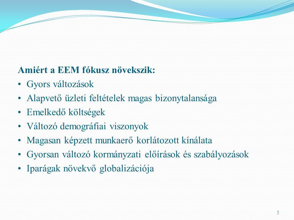 Amiért a EEM fókusz növekszik: Gyors változások Alapvető üzleti feltételek magas bizonytalansága Emelkedő költségek Változó demográfiai viszonyok Maga
