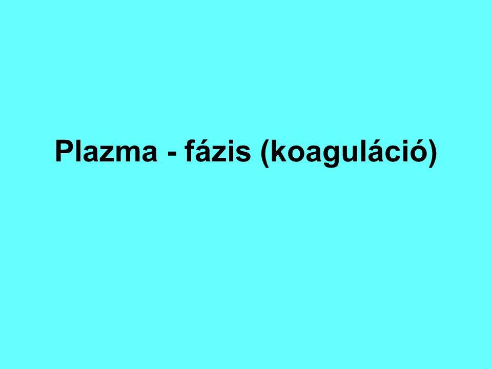 Plazma - fázis (koaguláció)